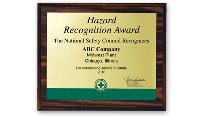 Hazard Recognition Award
