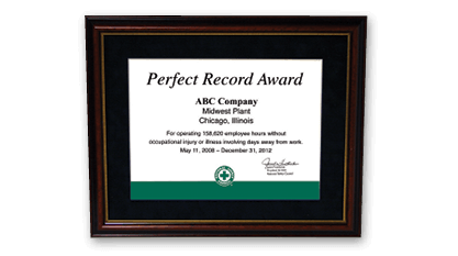 Perfect Record Award
