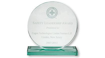 Safety Leadership Award